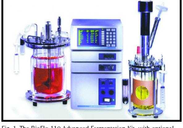 Bioflo Bioflo 110 Benchtop Fermentor
