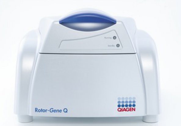 Rotorgene DNA Sequence - Real Time PCR Instrumentation