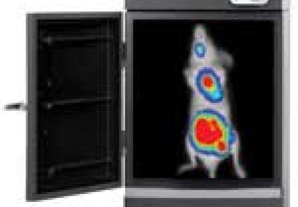 Caliper IVIS Kinetic In Vivo Optical Imaging System