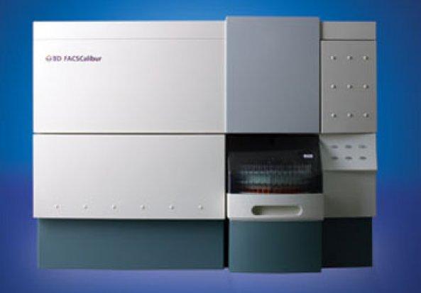 BD Biosciences FACSCalibur Flow Cytometer
