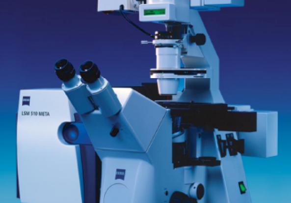 Carl Zeiss LSM510 Meta Confocal Microscopy System Confocal Microscope