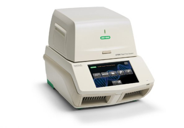 Bio-Rad CFX96 Polymerase Chain Reaction (PCR) Detection System