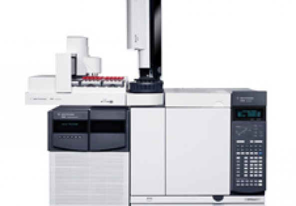 Agilent Agilent GCQQQ Gas Chromatography-Mass Spectrometer (GC-MS) Fatty Acid Facility Gas Chromatograph (GC)